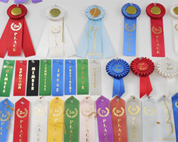 The Trophy Case Ribbons