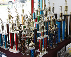 The Trophy Case Trophies